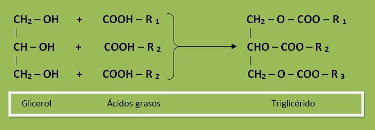 formula aceite